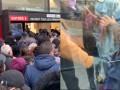 疫情下的法国:战争状态第一天 民众涌入超市疯狂抢购物资