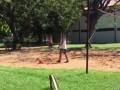 度假式坐牢?小罗跟狱友玩起网式足球 头顶脚踢还会打排球