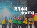 中国足球的未来!足球小将超燃十佳球 利物浦神战术被复刻
