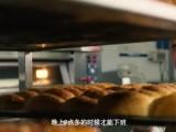 苏宁达人:22年匠心烘焙 只为东北人的家乡味