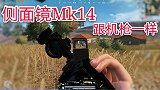 方木修仙记:Mk14侧面镜犹如全自动步枪,狙击模式无敌的存在