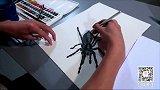 OY原创手绘-蜘蛛3D