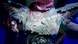 好莱坞大美人Rose McGowan人生首部MV RM486 装扮不像人