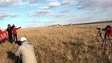 自驾呼伦贝尔大草原札记:草原欢歌