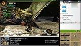 【MH4G】怪物猎人4G G3 天回讨伐