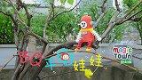 10-BQ平衡娃娃 锻炼孩子抽象思维