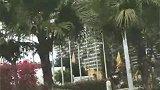 三亚美丽之冠,大树林酒店