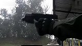 德国HK公司USP手枪