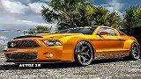 狂暴金蛇 福特Shelby GT500改装