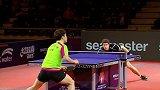 乒乓球-17年-国际乒联巡回赛:韩国公开赛 男子单打半决赛 弗朗西斯卡vs林桢勋-全场