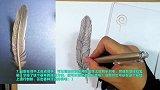 牛人OY手绘教程:羽毛的画法!