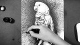 4007OY原创钢笔画-白鹦鹉