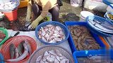 奶奶用LV包装鱼 台湾老奶奶竟用7000多元的LV装鲜鱼引关注!