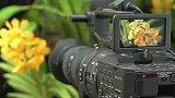 Sony NEX-FS700街头试用