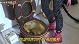 最奢侈的马桶,由LV真皮镶金打造,网友:买不起系列!