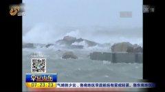 双台风结对来袭防汛防台风iii级应急响应启动